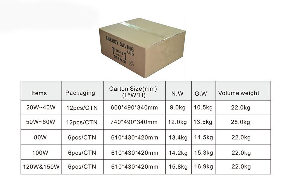 Temporary Construction Light 100W package